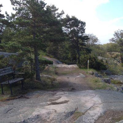 Gammal bänk på Tulluddens naturstig i Hangö