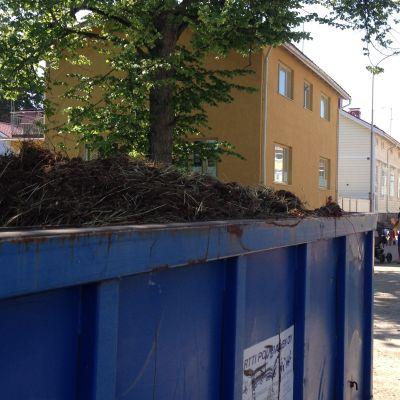 Hästavföring på en flake som står på en gata alldeles nära bostadshus.