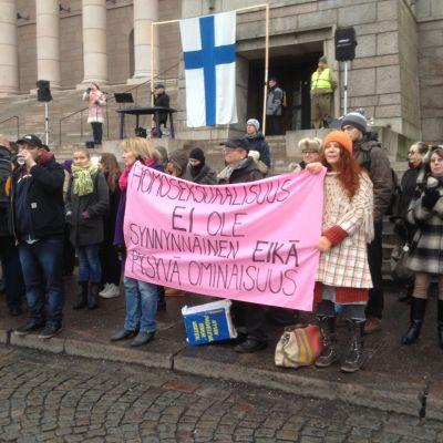 Demonstration emot jämlik äktenskapslag 28.11.2014