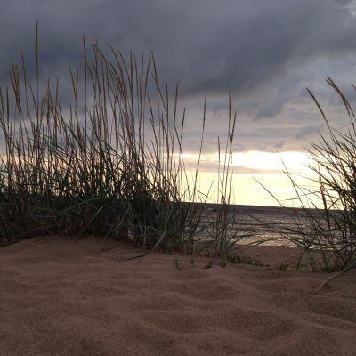 Kalajokis sanddyner i kvällsljus