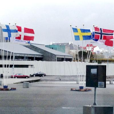 Nordiska flaggor vajar utanför Harpa-kulturhuset i Reykjavik