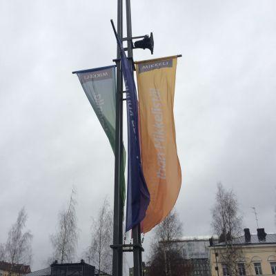 Liisa-myrsky ja Mikkelin keskusta torstaiaamuna.
