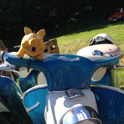 mopoklubben racerborg