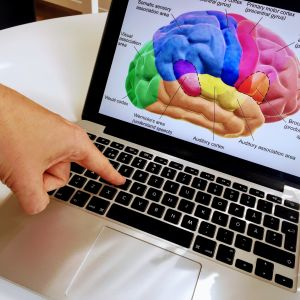 finger som trycker på tangentbord med en hjärna på skärmen