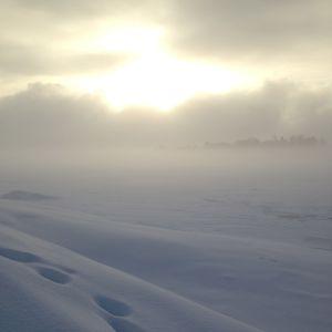 Ett vackert och disigt vinterlandskap.