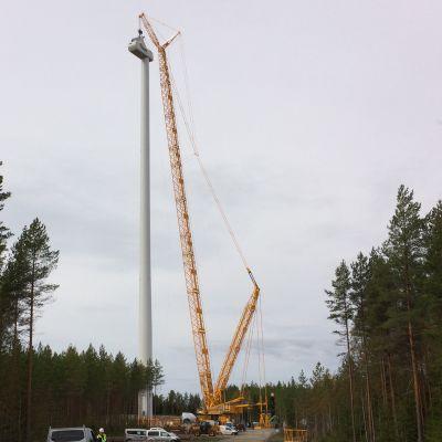 Konehuone saatiin nostettua 147 metrin korkeuteen.