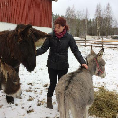 Siru-Anu Lahti aasien kanssa aitauksessa.