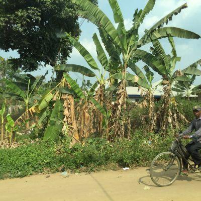 Ikot Ebom Itam elää suurelta osin luontaistaloudessa.