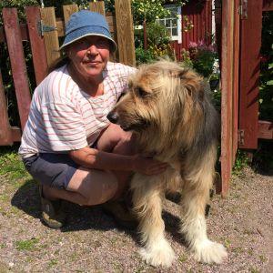 Glad tant och hund i Brunakärrs koloniträdgård