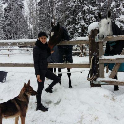 Hästar och hund hos Sofia Kuula.