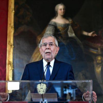 Itävallan liittopresidentti Alexander Van der Bellen. Taustalla vanha maalaus kultakehyksissä.