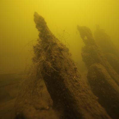 Meriarkeologien kuvaamaa kalaverkkoa hylkyyn kietoutuneena.