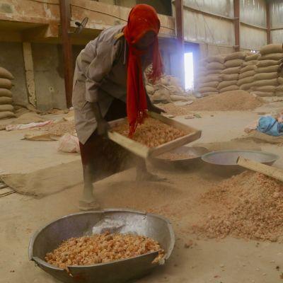 Huseina Halil Ibrahim työskentelee arabikumitehtaalla