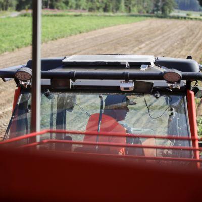 Veikko Ahtiainen traktorin ratissa.