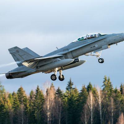 Suomen ilmavoimien Hornet nousussa Pirkkalan lentokentältä.
