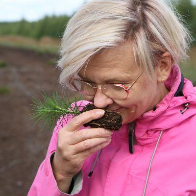 Ilmastobisnestä ilman pelisääntöjä – Jos ostan männyntaimia Suomesta tai metsää Afrikasta, hyvitänkö kesälomani päästöt?