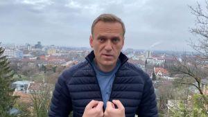 Navalnyj i lätt dunrock med en stad i bakgrunden.