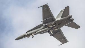 F-18 Hornet hävittäjä ilmassa