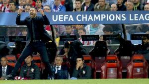 Diego Simeone, Atletico Madrids chefstränare
