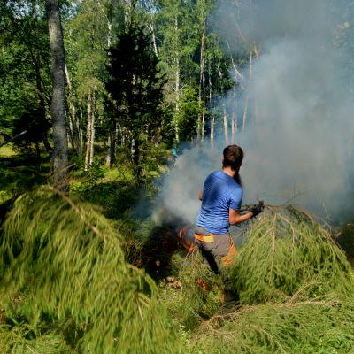 Bränner ris.