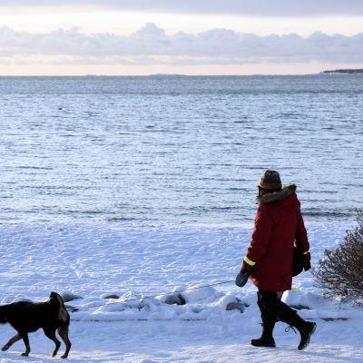 Ägare och hund på promenad i Brunnsparken.
