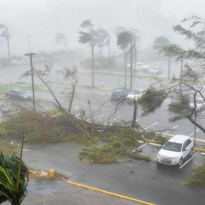 Orkanen Maria i Puerto Rico.