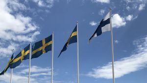 Finlands och Sveriges flagga vajar i vinden.