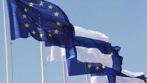 EU-flaggor och Finlands flaggor.