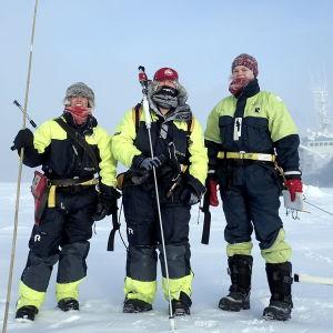 Tre av forskarna som försöker att förstå vilken betydelse ny, tunnare och yngre havsis har i Arktis.
