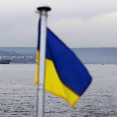 Ukrainska och ryska örlogsfartyg i hamnen i Sevastopol