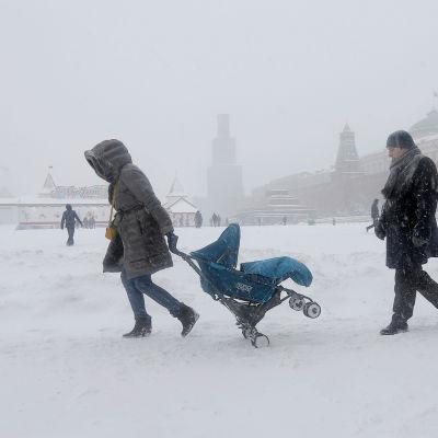 Moskvabor på Röda torget 25.12.2014