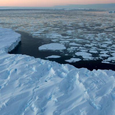 Isflak i antarktis
