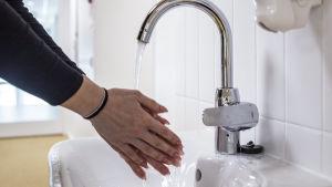 Käsiä pestään.