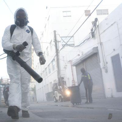 Myös turistien suosimalla Miami Beachillä on todettu zikavirustartuntoja.