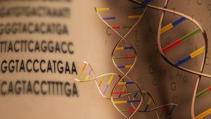Grafik föreställande DNA:s dubbelspiral.