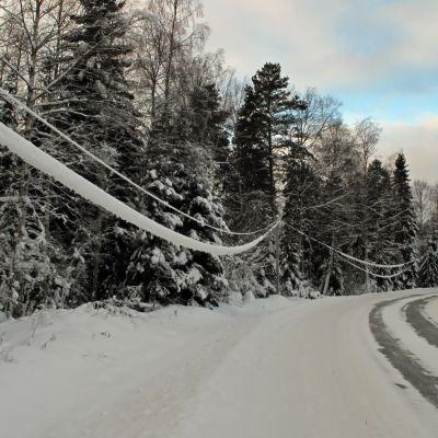 Snötyngda elledningar längs Hummeljutsvägen i Pedersöre.