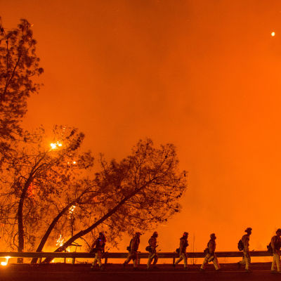 Brandkåren jobbar med att släcka skogsbranden i Clearlake, Kalifornien den 2 augusti.