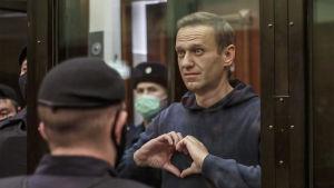 Navalnyi muodostaa käsillään sydämen oikeussalin lasikopissa, ympärillä poliiseja