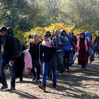 Pakolaisia kävelemässä Sloveniassa lähellä Rigonecen kylää lauantaina 24. lokakuuta.