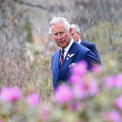 Prins Charles på ett besök i Halifax, Kanada, i maj 2014.