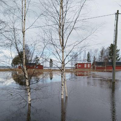 Ennätystulva uhkaa Kuortaneenjärvellä Etelä-Pohjanmaalla kastella jopa 150 vapaa-ajanrakennusta.