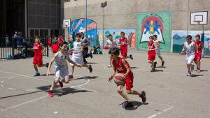 Pojat pelaavat pihassa koripalloa