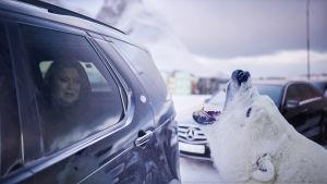 Grönlantiin sijoittuva uusi pohjoismainen jännityssarja tarttuu ajankohtaisiin ilmastokysymyksiin.