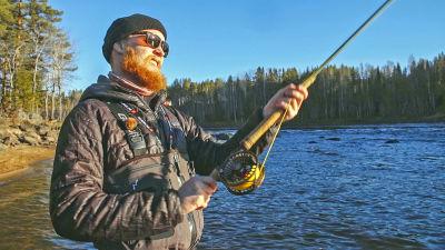 Parrakas mies perhokalastaa joella