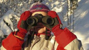 barn tittar genom kikare