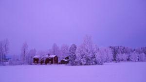 Aili Järvelän koti Kaustisella.