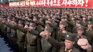 Delar av den koreanska folkarmén höjer en kuten näve under militärparad.