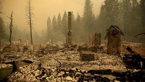 Markbränder i Kalifornien.