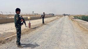 Den kurdiska Peshmerga-arméns trupper i Kirkuk den 12 juni 2014.