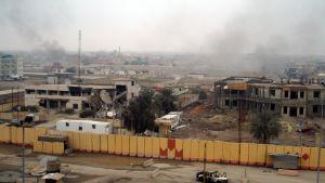 Förödelse efter strider i Falluja